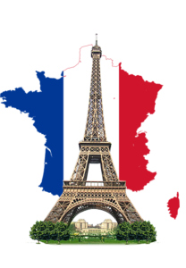 роды во франции